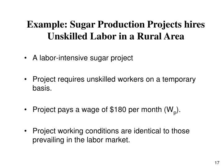 A labor-intensive sugar project