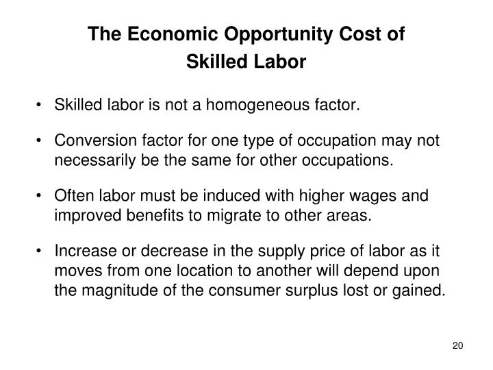 The Economic Opportunity Cost of