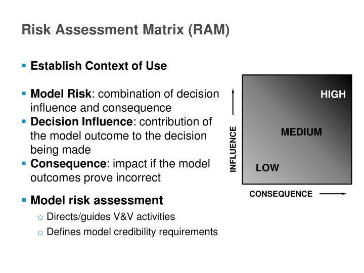 Risk Assessment Matrix (RAM)