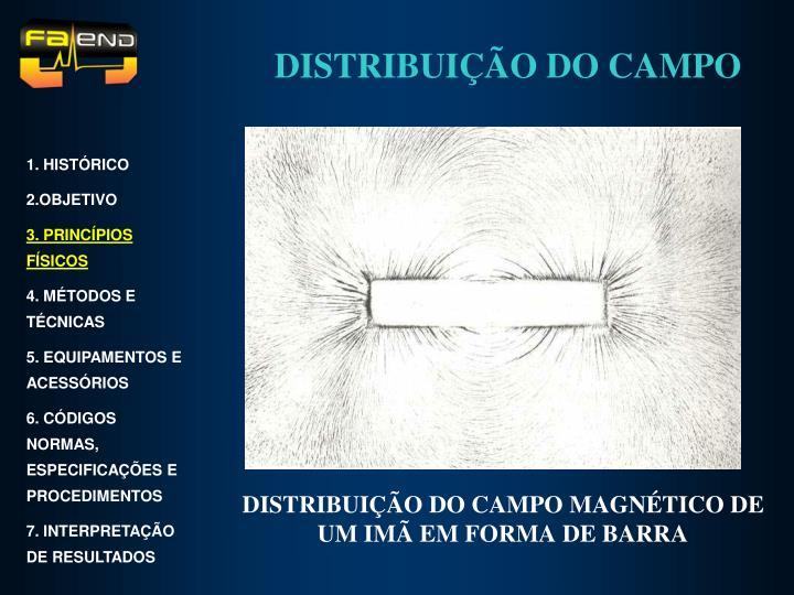 DISTRIBUIÇÃO DO CAMPO MAGNÉTICO DE UM IMÃ EM FORMA DE BARRA