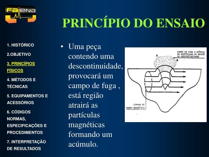 PRINCÍPIO DO ENSAIO