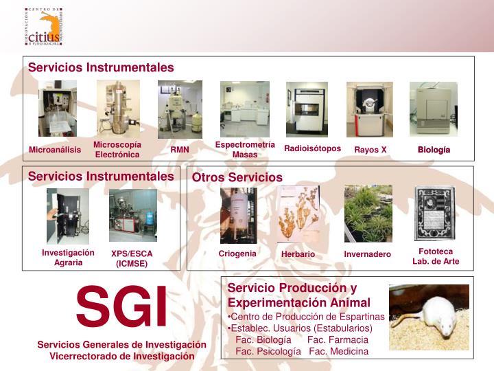 Servicio Producción y