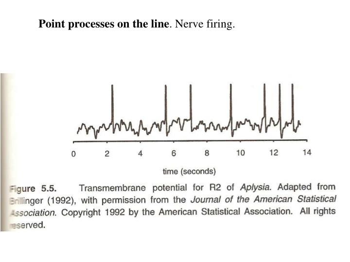 Point processes on the line