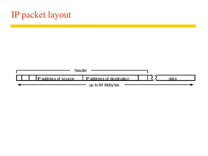 IP packet layout