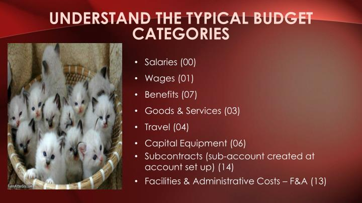 Understand the typical budget categories