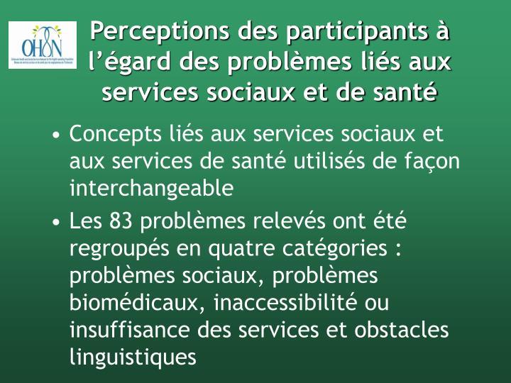Perceptions des participants à l'égard des problèmes liés aux services sociaux et de santé