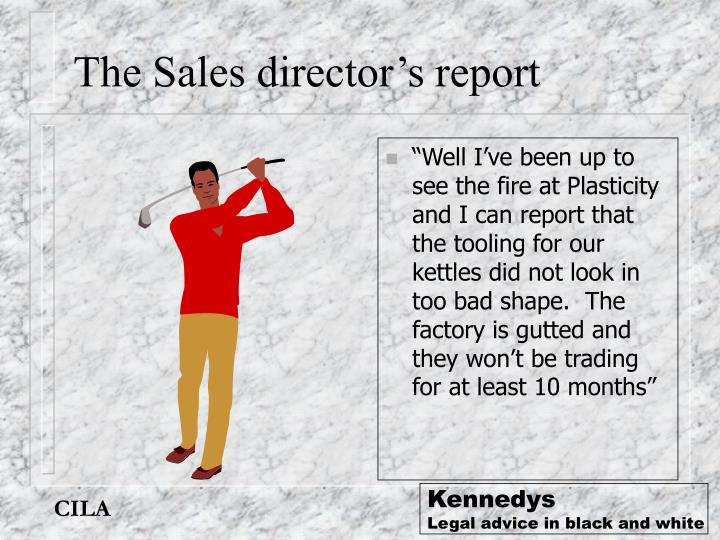 The Sales director's report