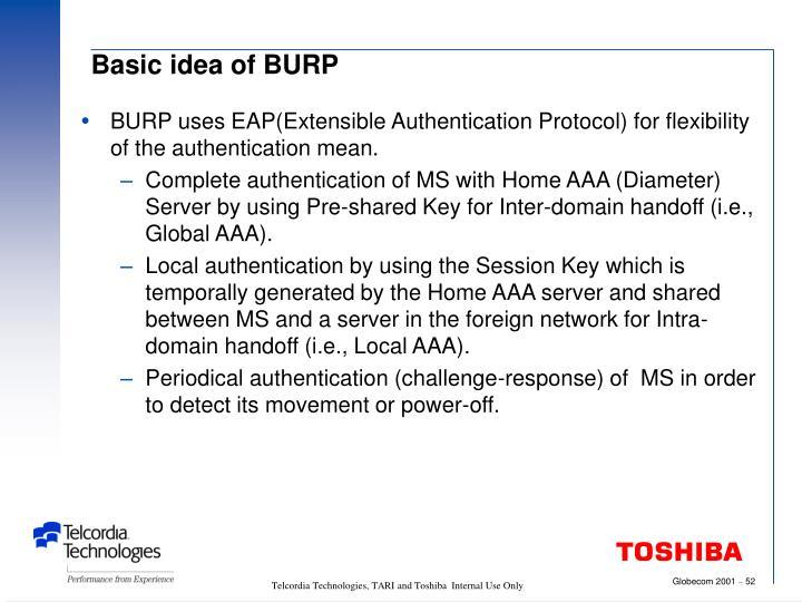 Basic idea of BURP