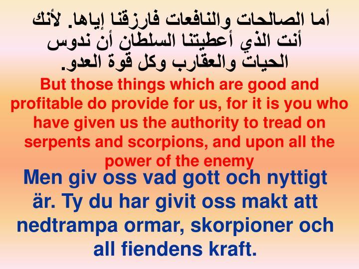 أما الصالحات والنافعات فارزقنا إياها. لأنك أنت الذي أعطيتنا السلطان أن ندوس الحيات والعقارب وكل قوة العدو.