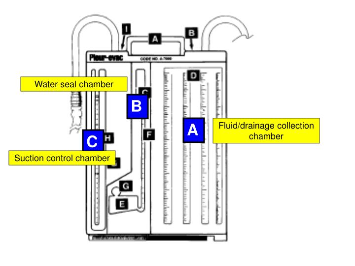 Water seal chamber