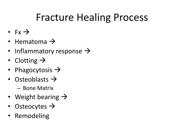 Fracture Healing Process