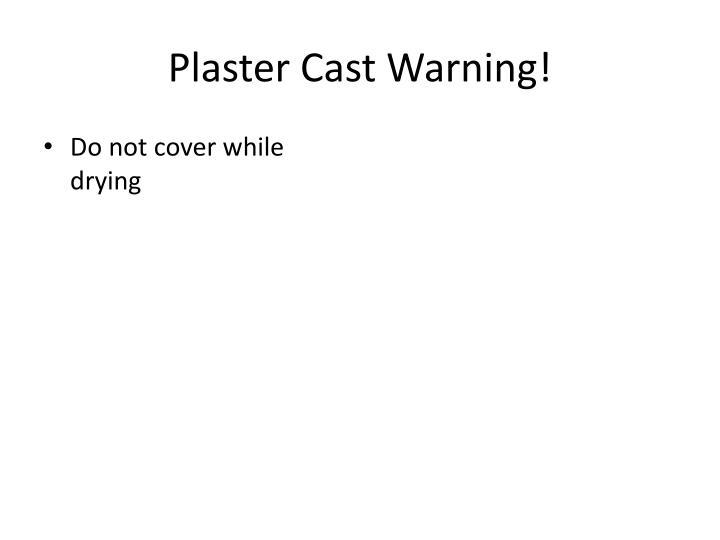 Plaster Cast Warning!