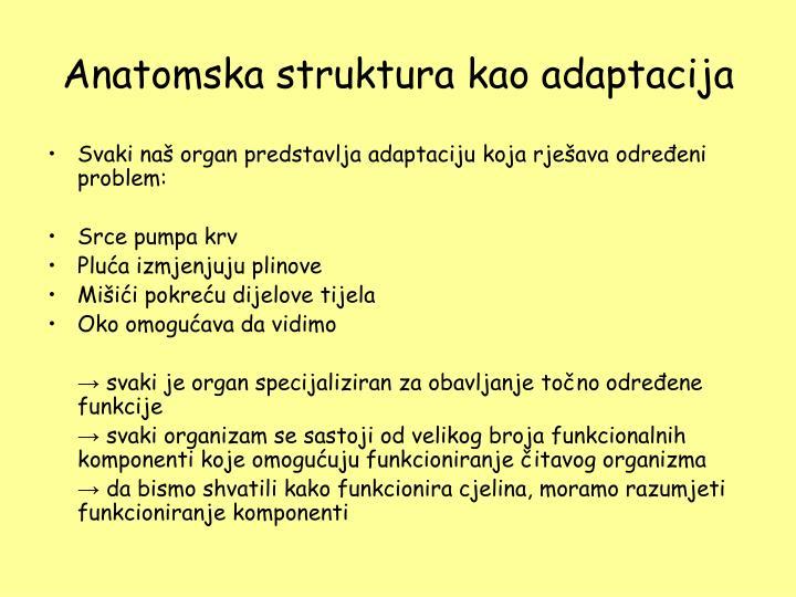 Anatomska struktura kao adaptacija