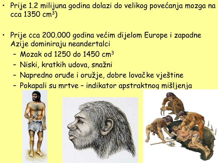 Prije 1.2 milijuna godina dolazi do velikog povećanja mozga na cca 1350 cm