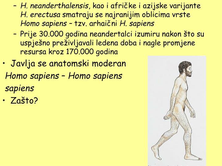 H. neanderthalensis