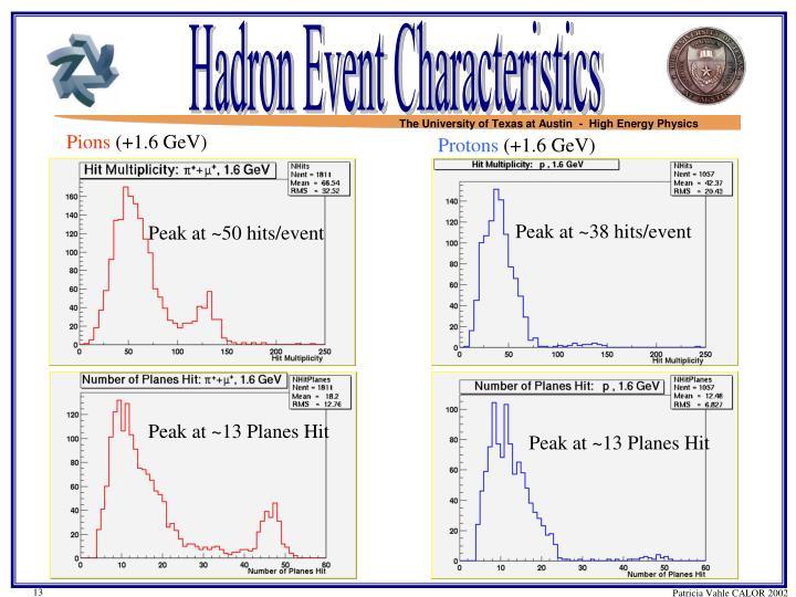 Hadron Event Characteristics