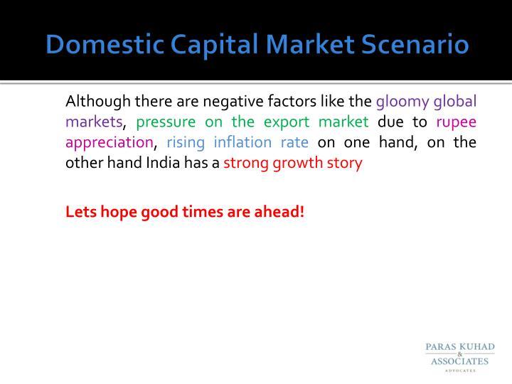 Domestic Capital Market Scenario