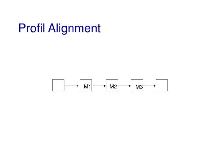 Profil Alignment