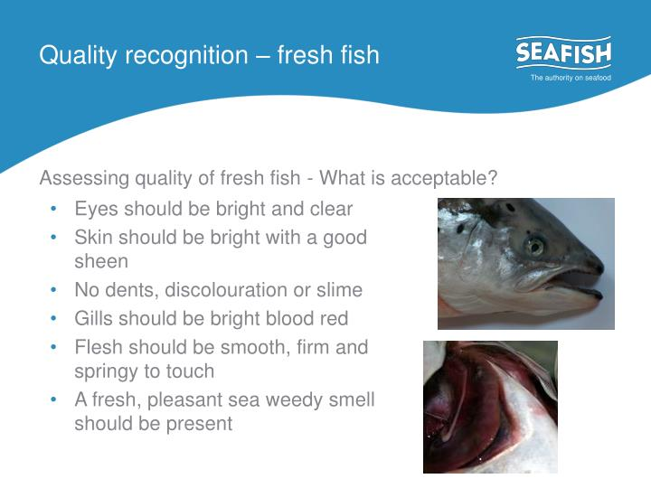 Quality recognition – fresh fish