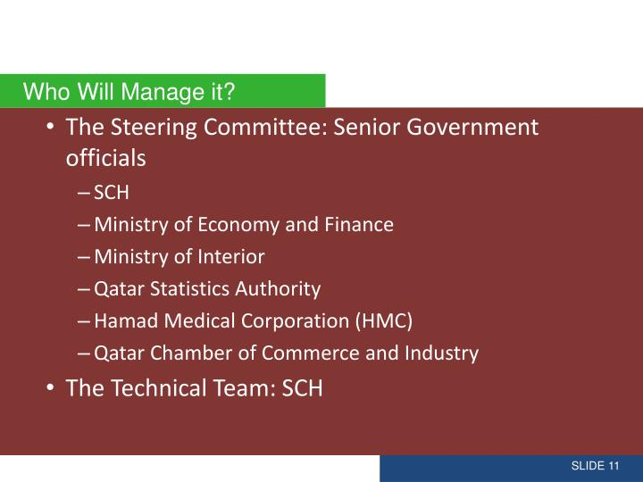 The Steering Committee: Senior Government officials