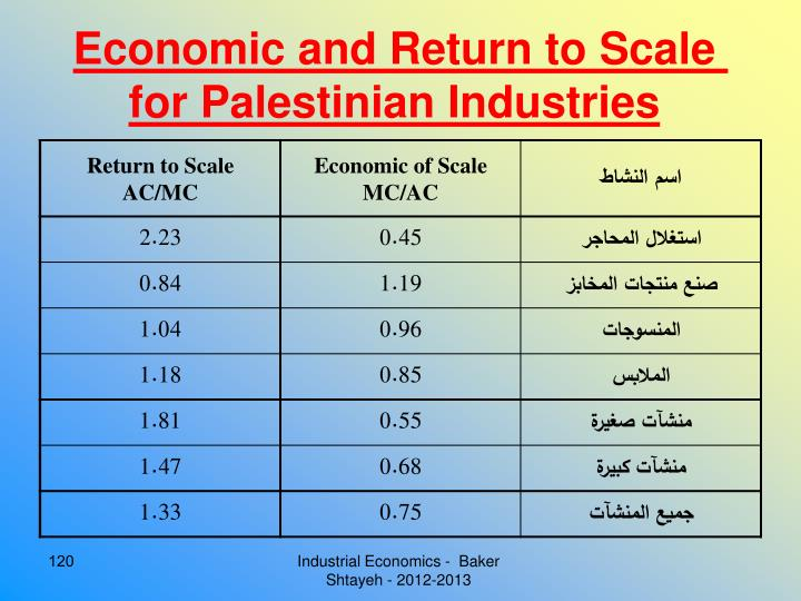 Economic and Return to Scale for Palestinian Industries