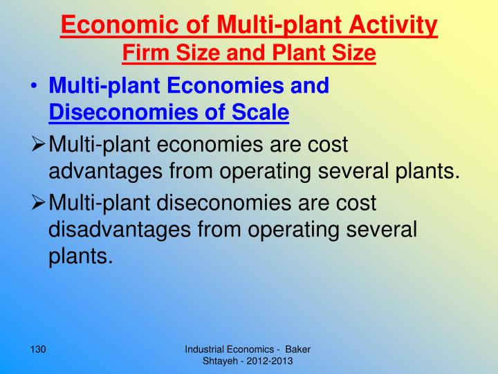 Economic of Multi-plant Activity