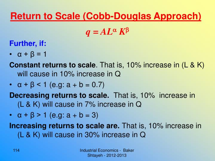 Return to Scale (Cobb-Douglas Approach)