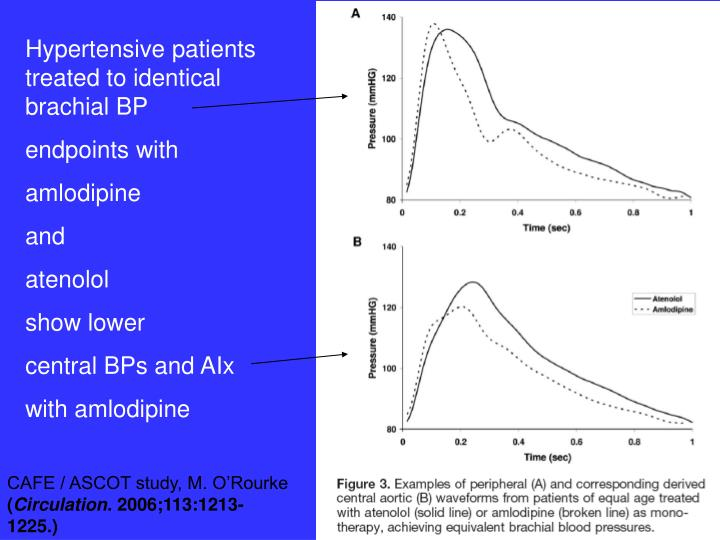 Hypertensive patients treated to identical brachial BP