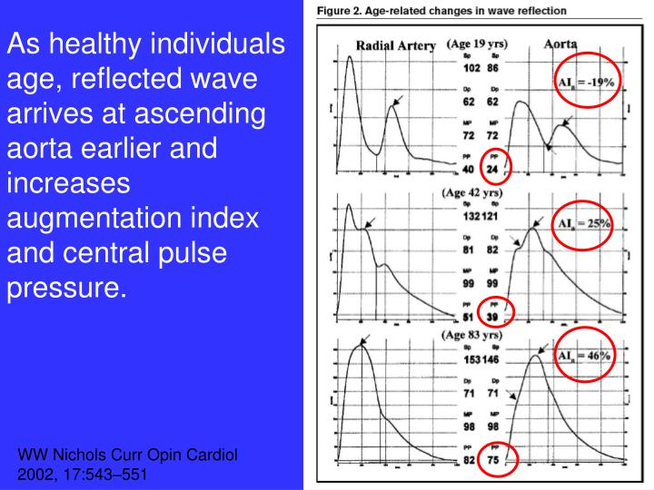 As healthy individuals age, reflected wave arrives at ascending aorta earlier and increases augmentation index and central pulse pressure.