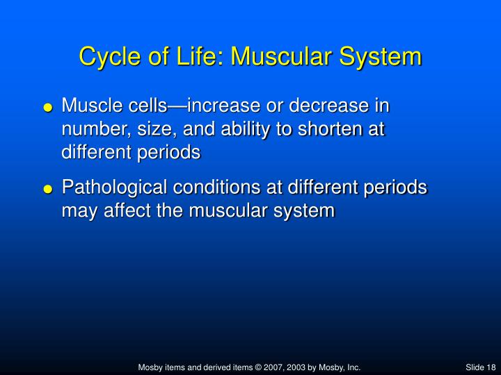 Chapter 10 muscular system gross anatomy