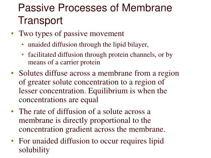 Passive Processes of Membrane Transport