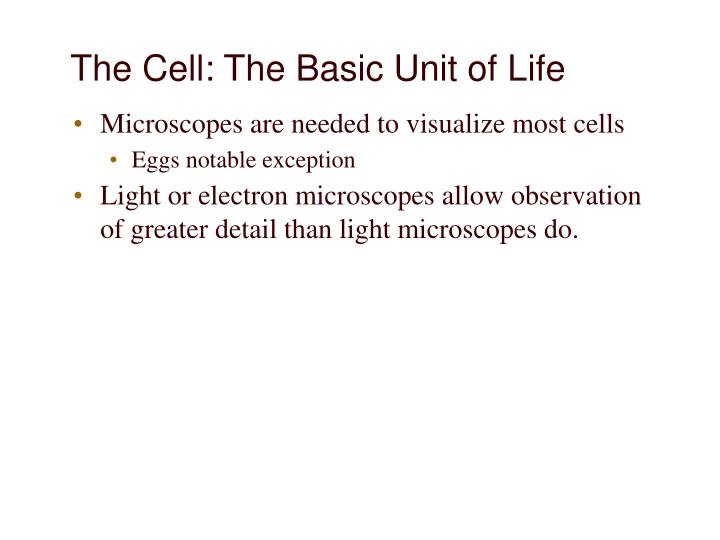 The Cell: The Basic Unit of Life
