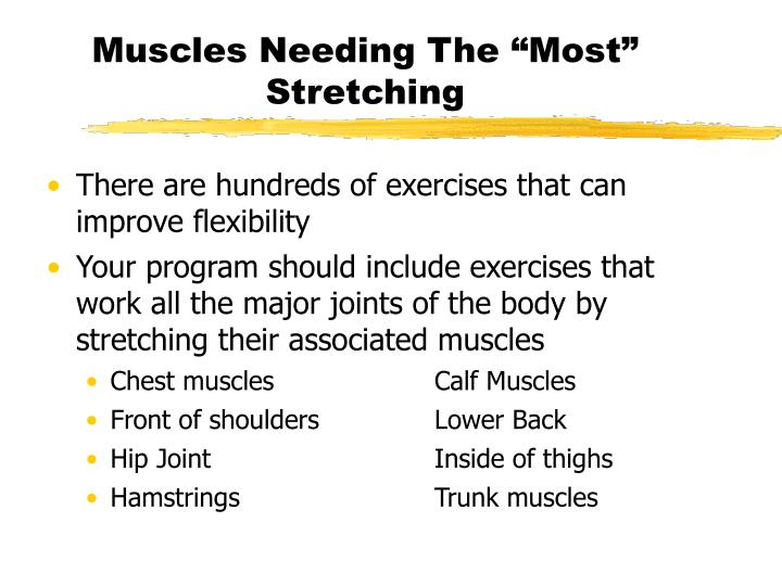 "Muscles Needing The ""Most"" Stretching"