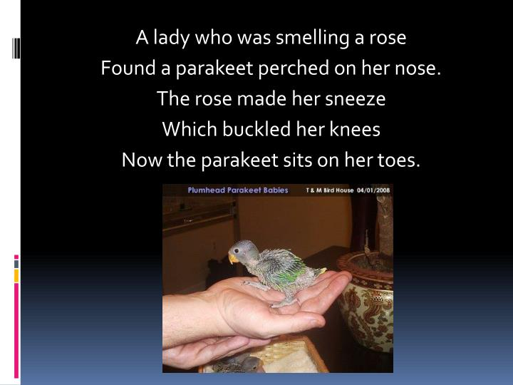 A lady who was smelling a rose