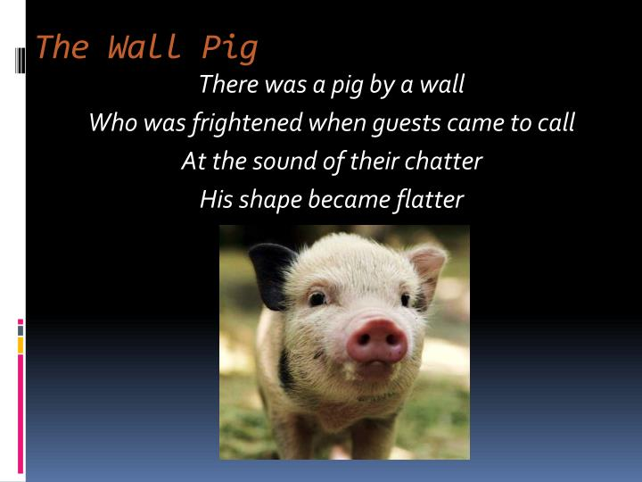 The Wall Pig