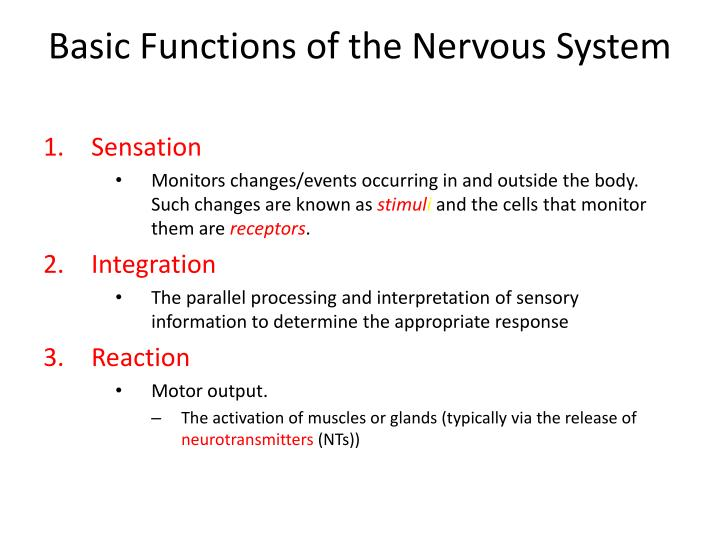 Basic functions of the nervous system
