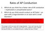 rates of ap conduction