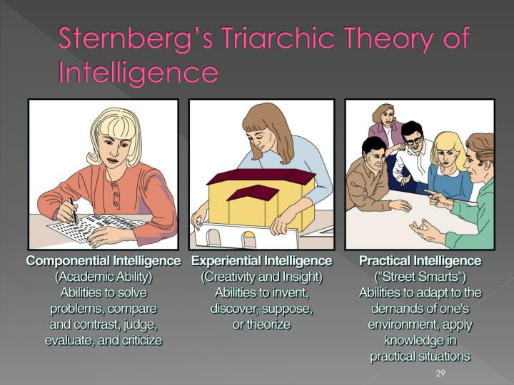 Sternberg's Triarchic Theory of Intelligence