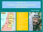 the p l o palestine liberation organization was formed to