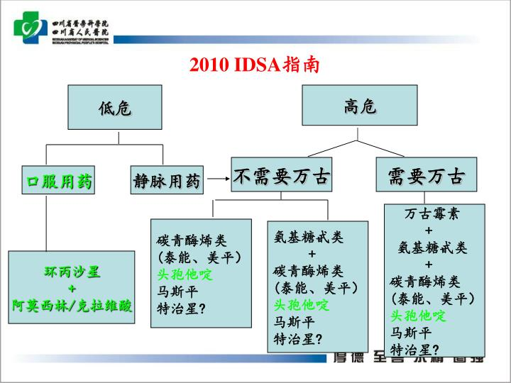 2010 IDSA