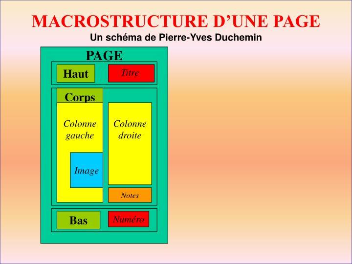 MACROSTRUCTURE D'UNE PAGE