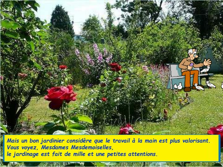 Mais un bon jardinier considre que le travail  la main est plus valorisant.