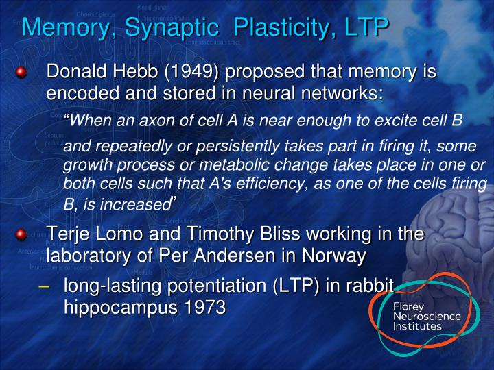 Memory, Synaptic  Plasticity, LTP