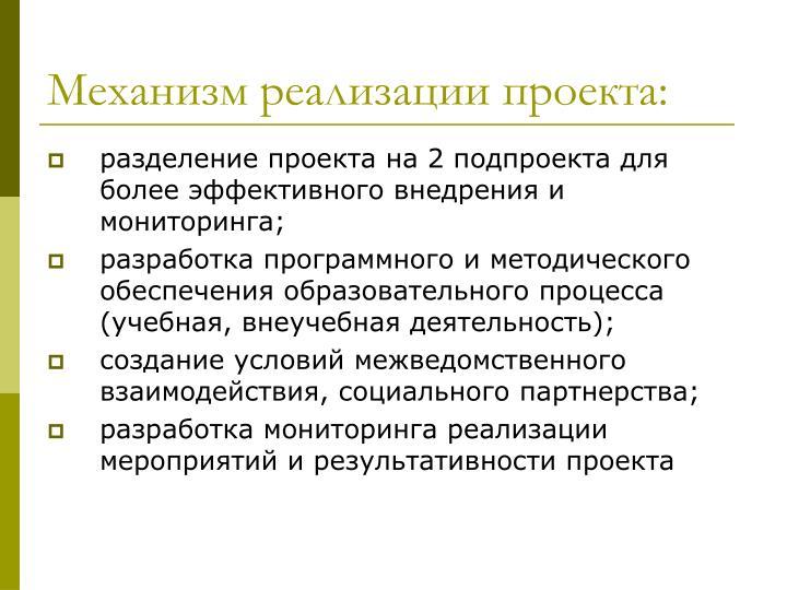 Механизм реализации проекта: