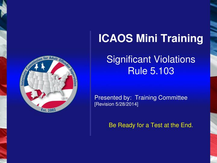 ICAOS Mini Training