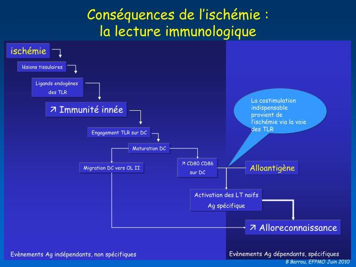 Conséquences de l'ischémie :