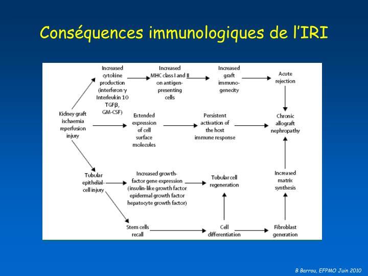 Conséquences immunologiques de l'IRI
