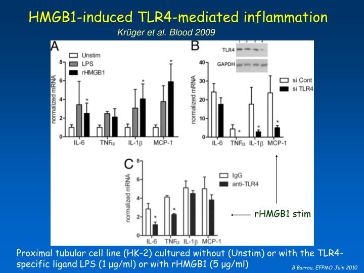 HMGB1-induced TLR4-mediated inflammation