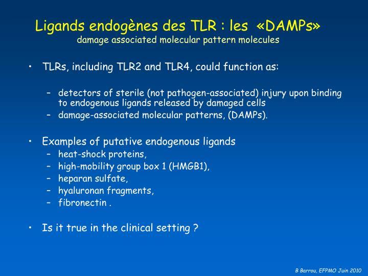 Ligands endogènes des TLR : les  «DAMPs»