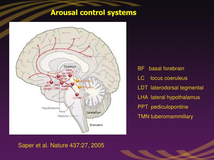 Arousal control systems